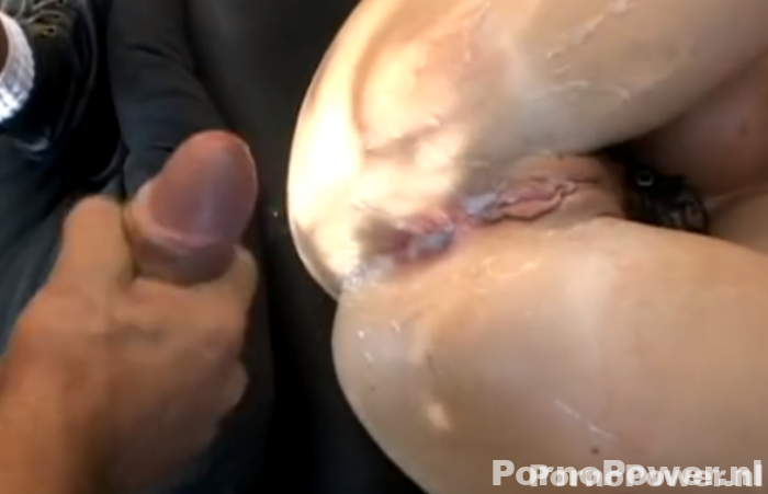 HD tranny porno tube